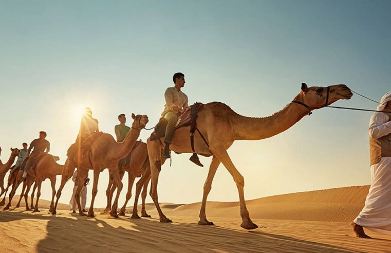What are the most favorite activities of people here at desert safari Dubai