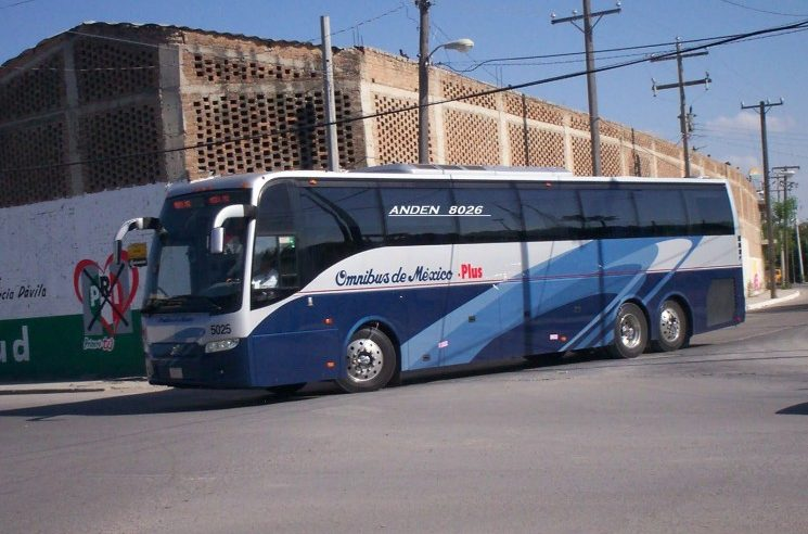 What are the Different Buses Available in Mexico?